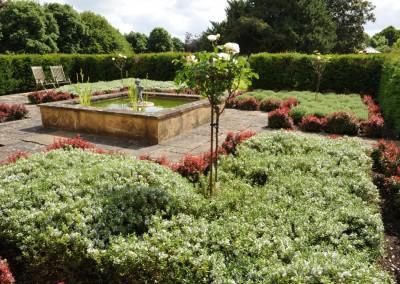 Hebe garden